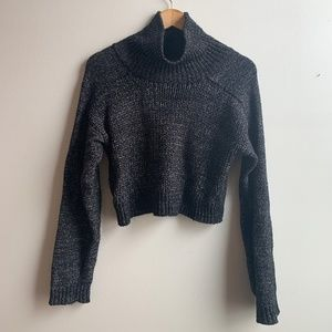 Zara Knit Cropped Turtleneck Sweater